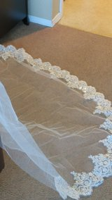 New Ivory Cathedral wedding veil with lace edge (Reduced) in DeKalb, Illinois