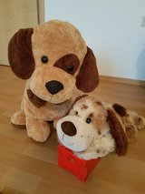Two Stuffed Animals in Ramstein, Germany