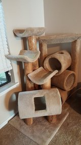 Double Cat Tree in Beaufort, South Carolina