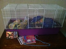 LARGE GUINEA PIG CAGE AND SUPPLIES in Lawton, Oklahoma
