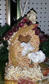 Bird house covered in seed in Alamogordo, New Mexico