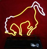 Neon Horse Light in 29 Palms, California