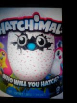 Hatchimal interactive toy in Davis-Monthan AFB, Arizona