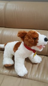 Build a bear puppy in Joliet, Illinois