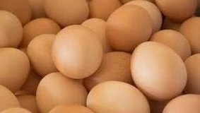 chicken eggs (goats too) org fed and farm pastured in Alamogordo, New Mexico