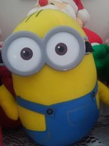 Minion in Fort Leonard Wood, Missouri