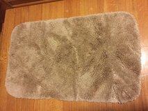 Bathroom Rug in Naperville, Illinois