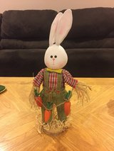 Bunny Decoration in Aurora, Illinois