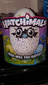 Hatchimals in Philadelphia, Pennsylvania