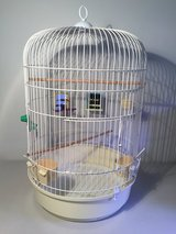 Bird cage for Small or Medium size bird in Bolingbrook, Illinois