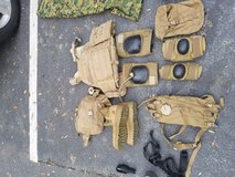 Plate carrier and 4 sapi plate in Beaufort, South Carolina