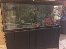 100 Gallon Fish Tank Black Stand in Fort Bliss, Texas