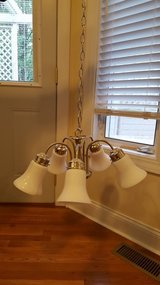 Dining room Light Fixture in Batavia, Illinois
