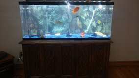 Complete 55 gallon freshwater aquarium with stand in Fort Leavenworth, Kansas