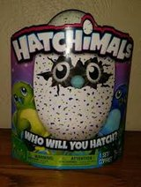 2 Brand new green/Blue hatchimals in bookoo, US