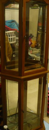 Curio Cabinet in Glendale Heights, Illinois