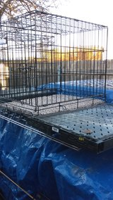 one  kennel med two small left in Lawton, Oklahoma