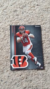 Cincinnati Bengals FATHEADS - NEW in Camp Lejeune, North Carolina