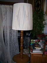 floor lamp in Belleville, Illinois