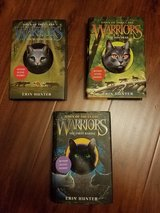 Warriors Dawn of the Clans by Erin Hunter hardcover lot in Lockport, Illinois