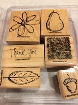 Stampin UP All Natural Stamp Set in Joliet, Illinois