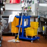 Amanda's cleaning service in Naperville, Illinois