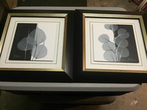 Leaf Pictures w/ Frames in Sheppard AFB, Texas