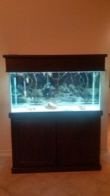 Fish Tank with Cabinet in bookoo, US