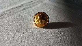 Texas brass button with Star in Glendale Heights, Illinois