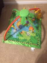 Fisher-Price Safari floor baby toy in Camp Lejeune, North Carolina