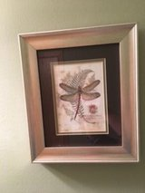 Dragonfly framed print in Bolingbrook, Illinois