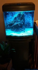 Saltwater Nano Cube in Fort Carson, Colorado