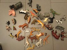 Set of animals in Ramstein, Germany