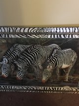 Zebra picture in Hinesville, Georgia