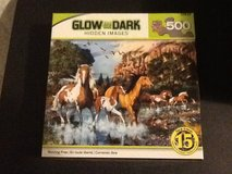 Glow in the dark puzzles in 29 Palms, California
