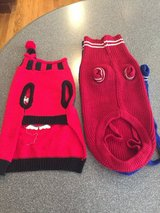 Dog sweaters in Wheaton, Illinois