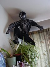 large hanging spiderman in Fort Carson, Colorado