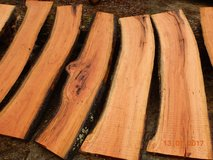 Wild  cherry   live  edge  slabs ( 5 1/2  ft  long) in Cadiz, Kentucky