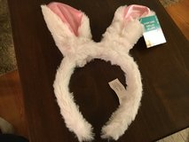 Bunny Ears in Naperville, Illinois