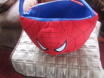 Spiderman easter Basket in Chicago, Illinois