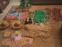 Luau Party Supplies in Ramstein, Germany