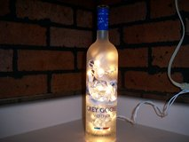 Grey Goose Lighted Bottle in Kankakee, Illinois