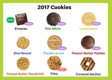 Girl Scout cookies in Cherry Point, North Carolina