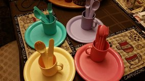 Multi-Color 20 Piece Picnic Plate Set in Fort Campbell, Kentucky