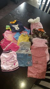 Med. Dog clothes in Nellis AFB, Nevada