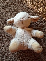 Sleep Sheep - Lullaby and Sound Plush Toy in Glendale Heights, Illinois