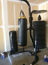 Punching bags and frame in bookoo, US