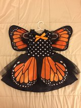 Monarch Butterfly Costume 2T in Chicago, Illinois