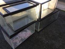 5 aquarium tanks w/screen tops in Travis AFB, California