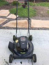 Gas Lawnmower in Vista, California